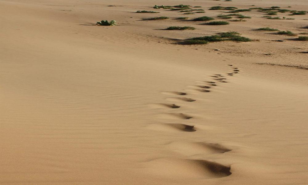 Ambassade de la r publique islamique de mauritanie en france la france en m - Credit islamique en france ...